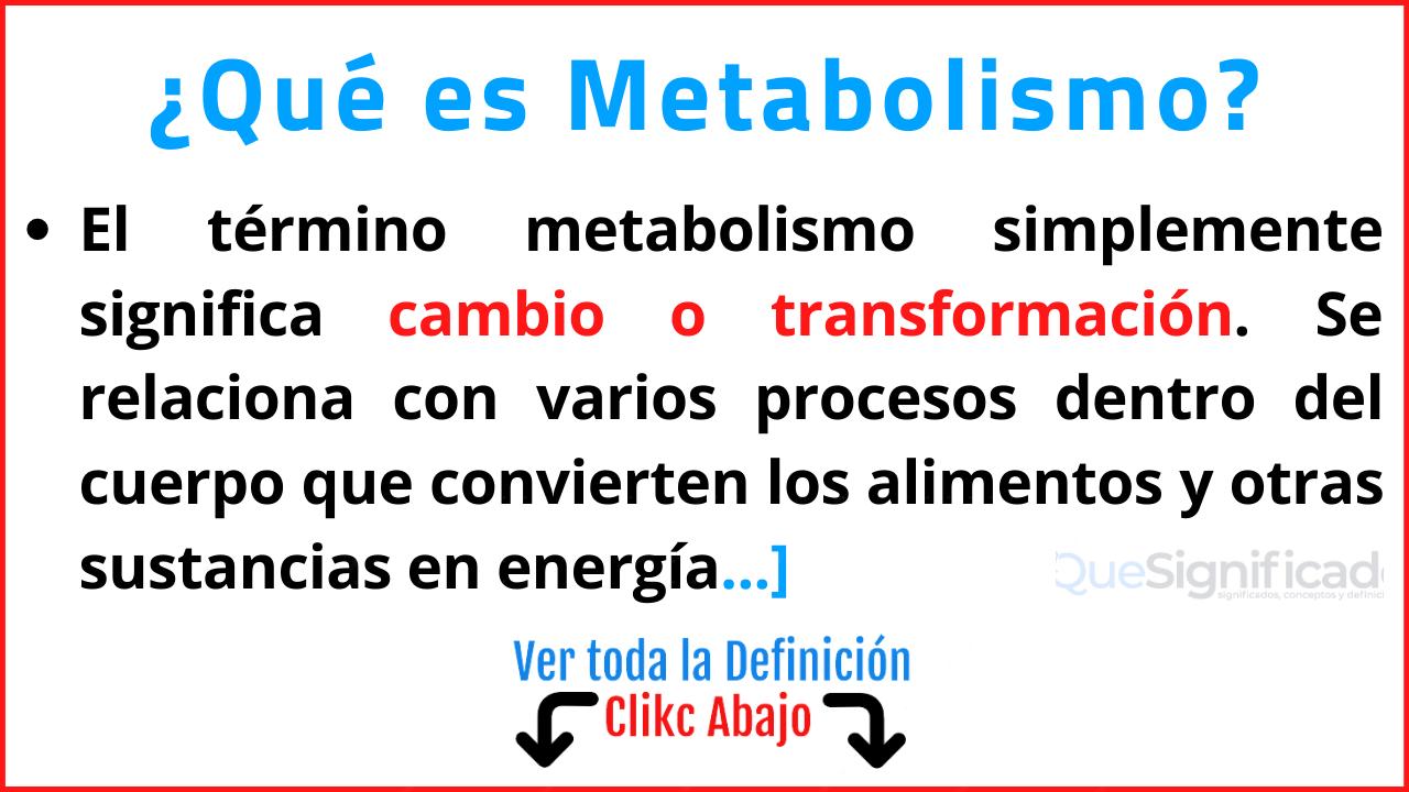 qué es metabolismo