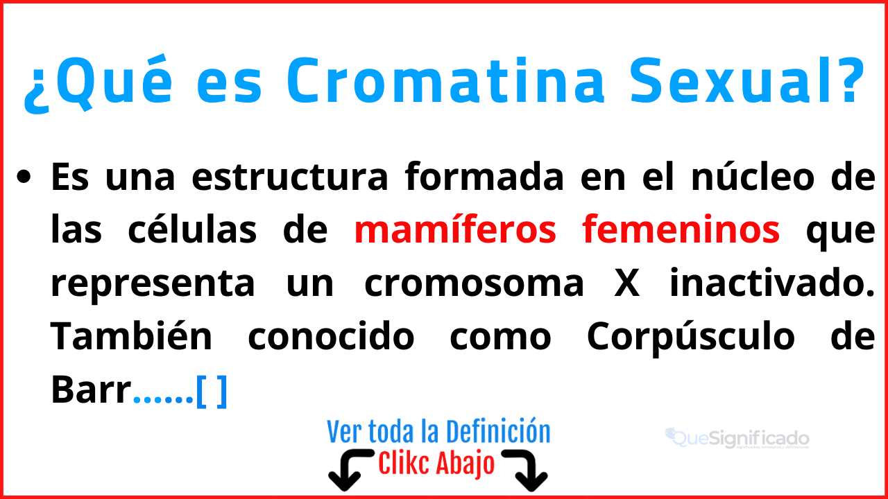 Qué es Cromatina Sexual
