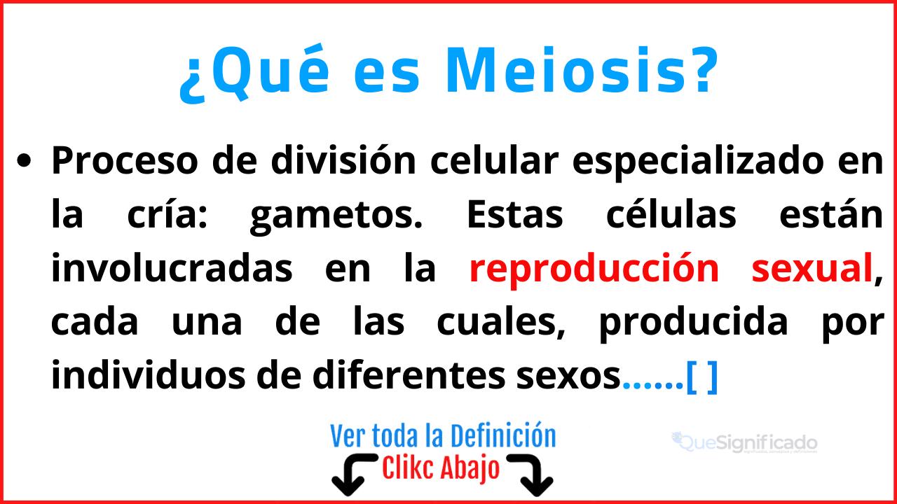 Qué es Meiosis