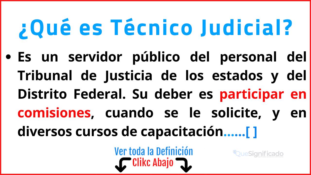 Qué es Técnico Judicial